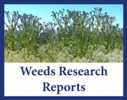 weeds reports